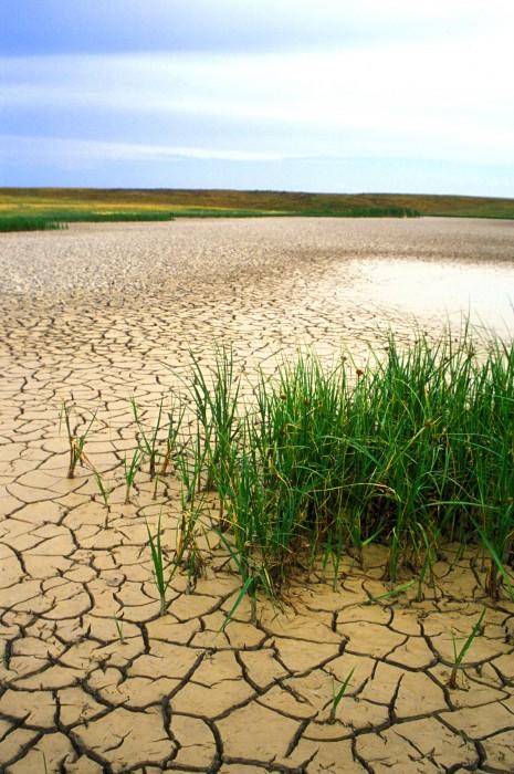 dry pan, South Dakota (2003)