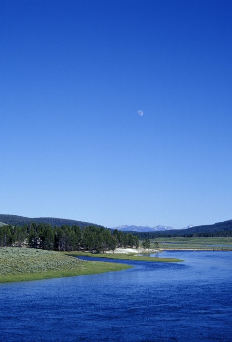 south of Yellowstone, Wyomimg (2003)