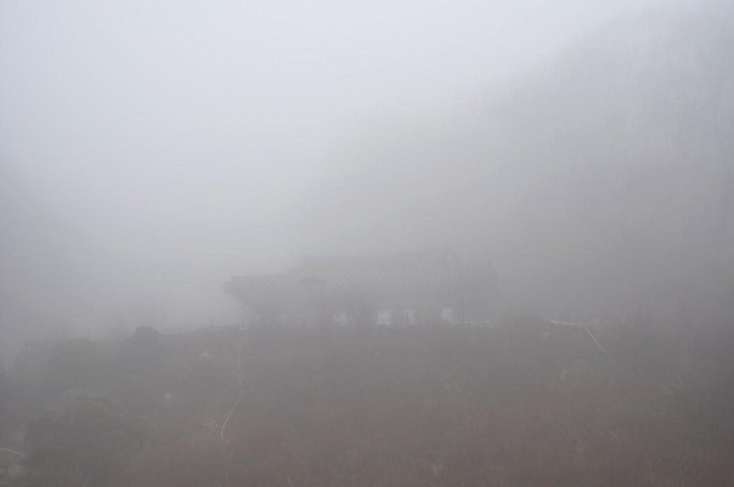 Daegu (2009)