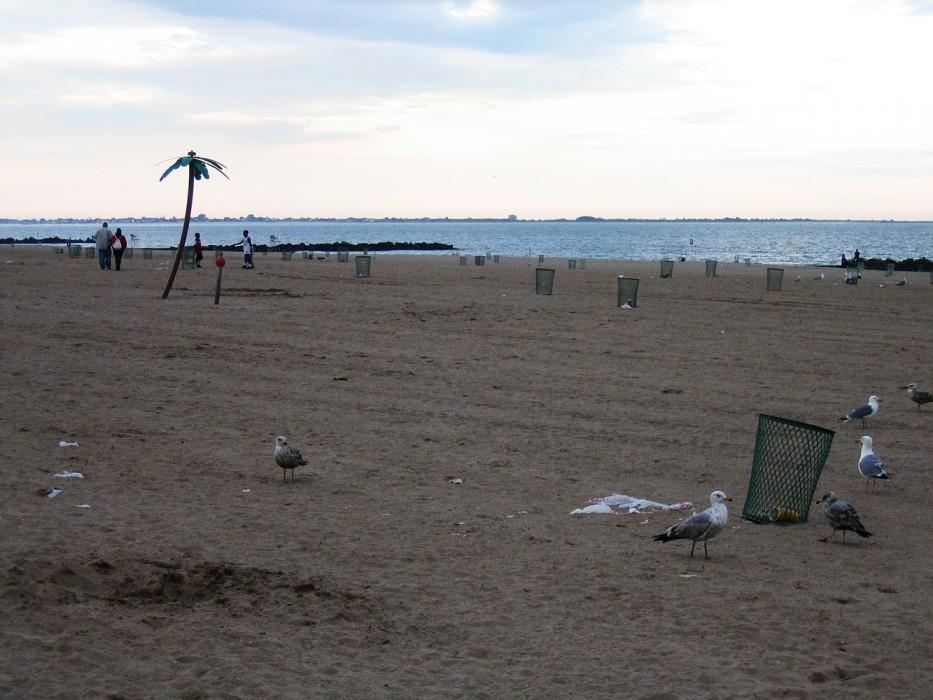 Coney Island (2006)